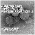 MERSコロナウイルス-怖い-中国人